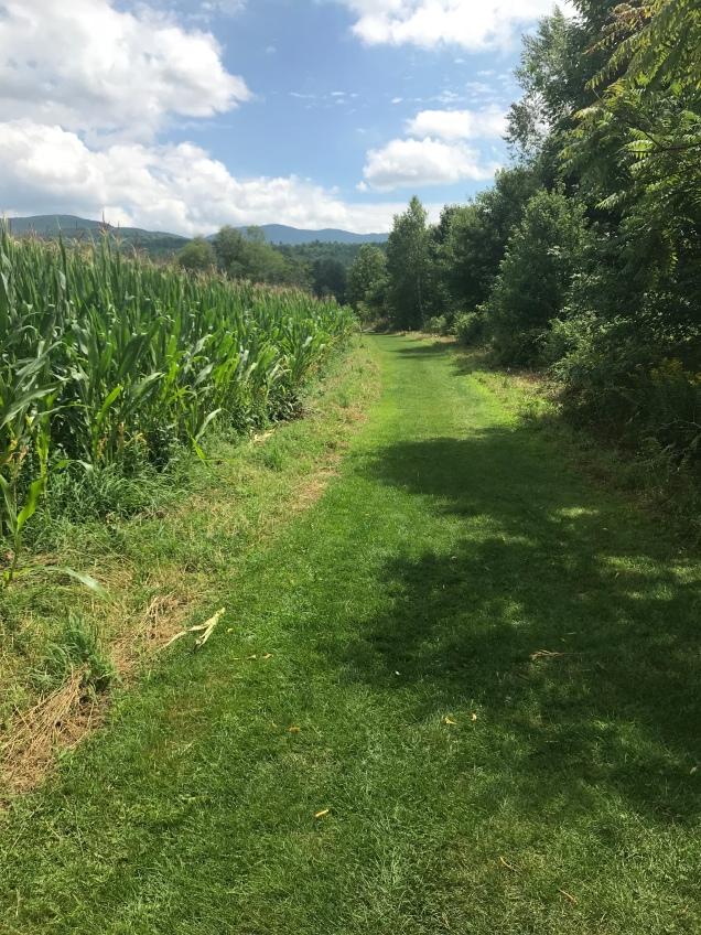 vt quiet path
